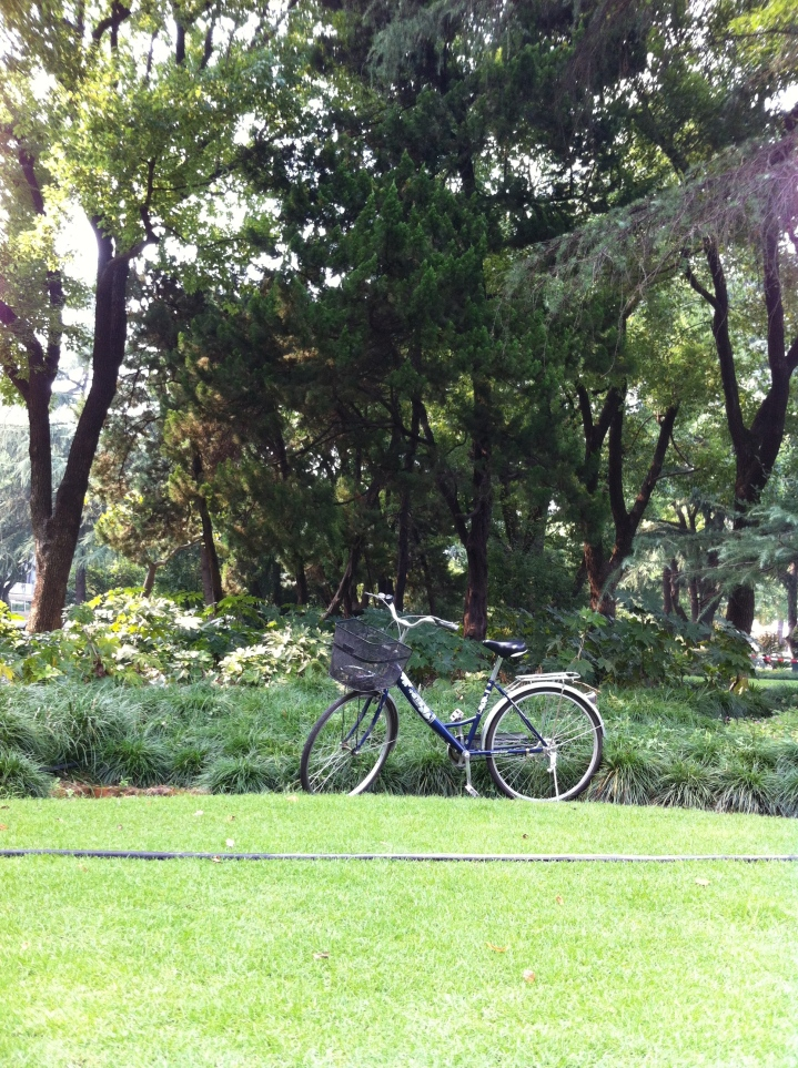 Bike in the park