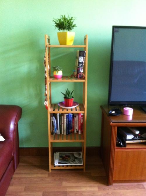 bookshelf and plants